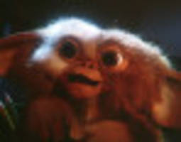 'gremlins' remake reportedly gets the fast track from warner bros.